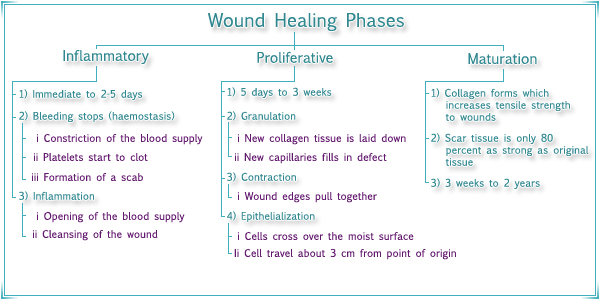Maturation in wound healing